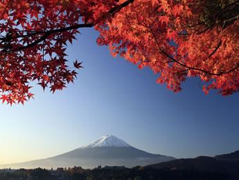 日本大阪箱根东京富士山双飞6日游(春秋)