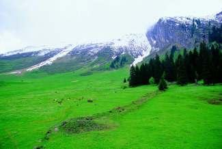 盈尚系列:法瑞意3国金色山口+冰川3000十一日游(瑞航,瑞签)