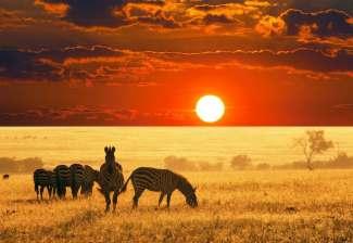 肯尼亚奢华十日游
