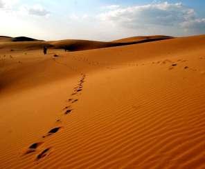 内蒙希拉穆仁草原、银肯响沙湾、成吉思汗陵、鬼城康巴什、塞外青城双卧七日游