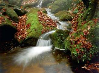 宝天曼峡谷漂流、宝天曼原始森林二日游